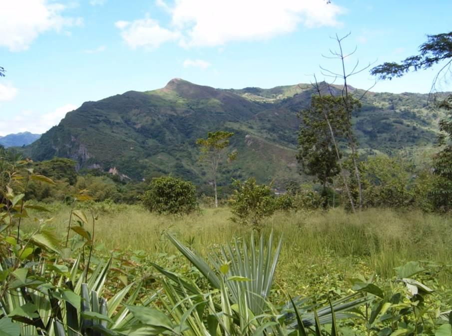 TESOROS DE COLOMBIA 20131015111437-Origional_Land