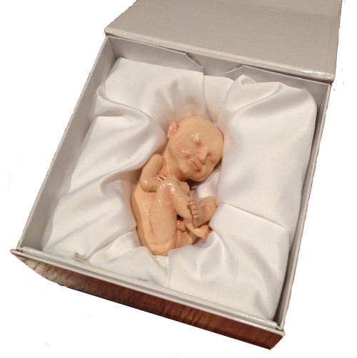 See Your Unborn Baby In Full Size Through 3d Babies