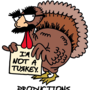 20130329150242-i_m_not_a_turkey_logo_transparent