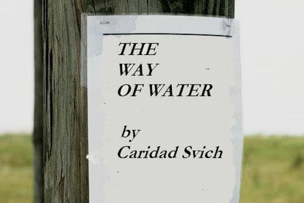 20120304221236-thewayofwater_graphic1