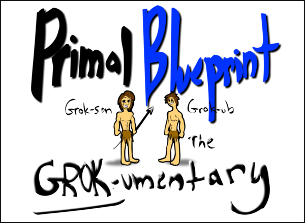 The Primal Blueprint 21 Day Total Body Transformation Mark Sisson 2015 ...