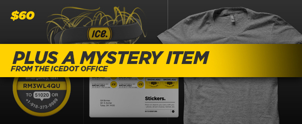 A MYSTERY ITEM + ICE PACK (ICEdot Band + 1 year membership + T-Shirt + Snap + Stickers)