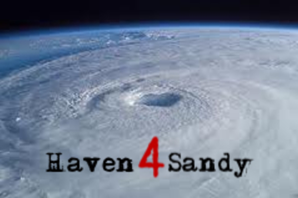 20121107151612-haven4sandypic