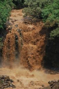Precious soil washes down to the sea when it rains