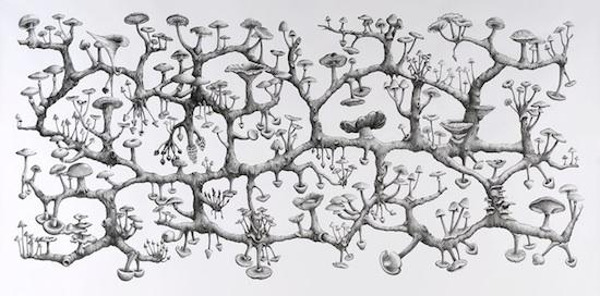 mushroom network art