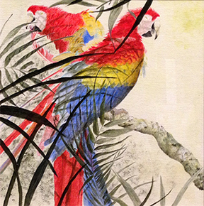 Kenyon Gibson's macaw painting