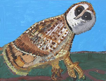 """Owl"" by Bruce Bazinet"