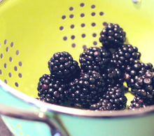20121101184809-blackberries_01