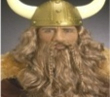 20121111150200-viking