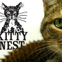 20121119152656-kittynest_indiegogo_copy