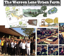 20130201171655-urbanfarmflyer2.002