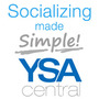 20120215231247-socializing_made_simple_icon